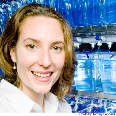Jennifer Rhodes, PhD
