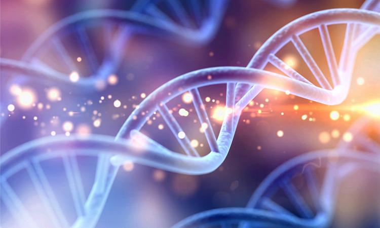 Scientists develop new CRISPR-based tool to control epigenome